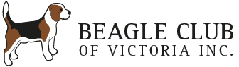 Beagle Club of Victoria Mobile Logo