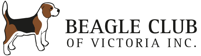 Beagle Club of Victoria Retina Logo