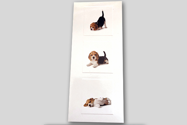 Greeting card featuring 3 Beagle puppies